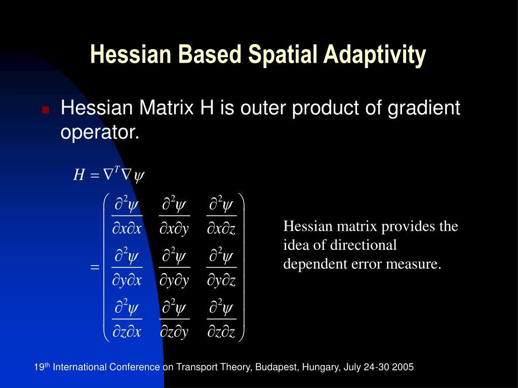 Hessian Based Spatial Adaptivity