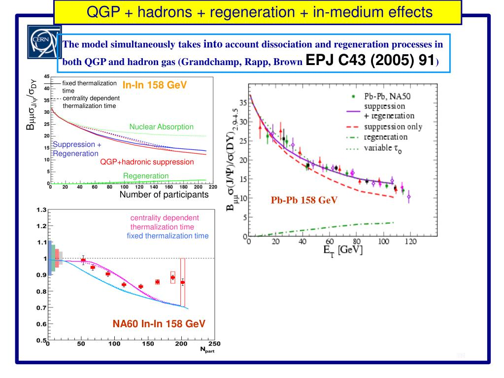 QGP + hadrons + regeneration + in-medium effects