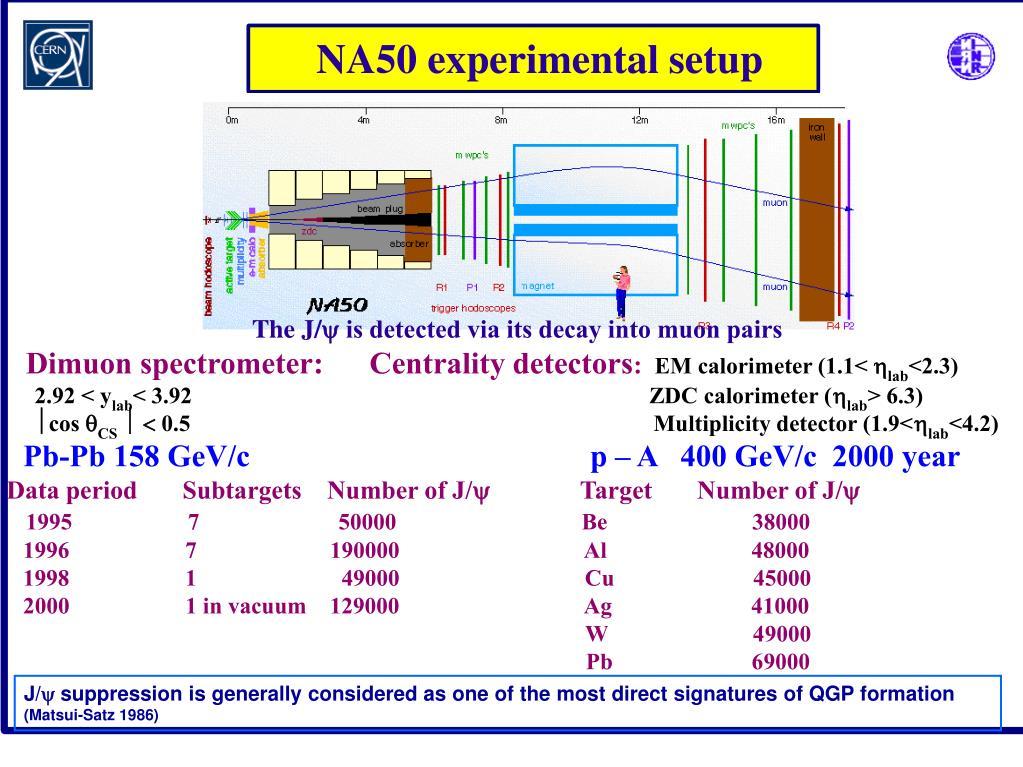 NA50 experimental setup
