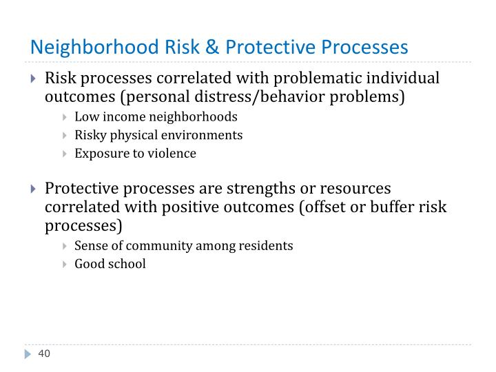 Neighborhood Risk & Protective Processes