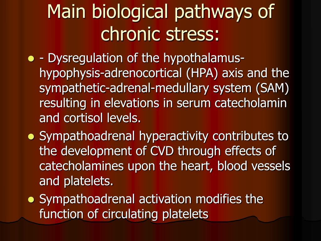 Main biological pathways