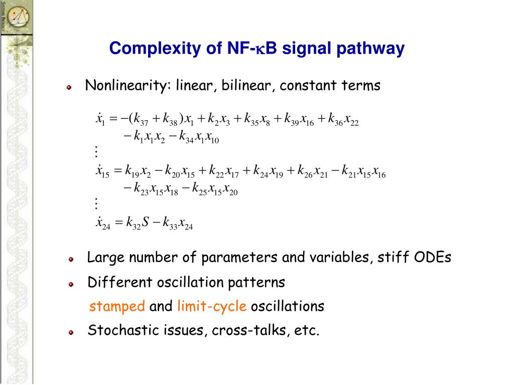 Complexity of NF-