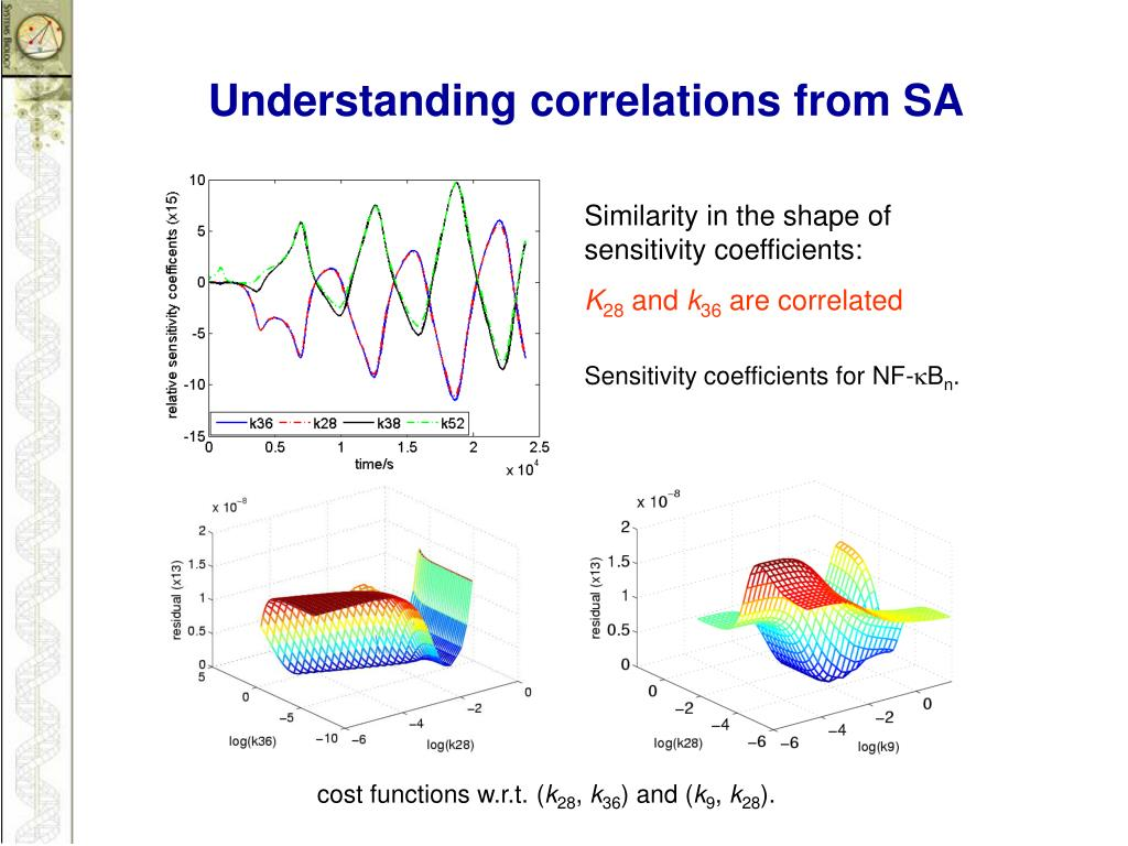 Understanding correlations from SA