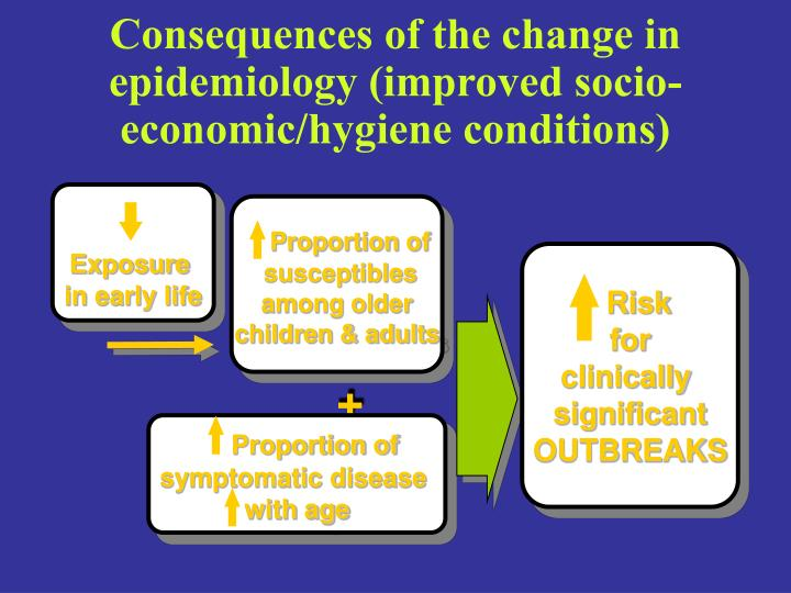 Consequences of the change in epidemiology (improved socio-economic/hygiene conditions)