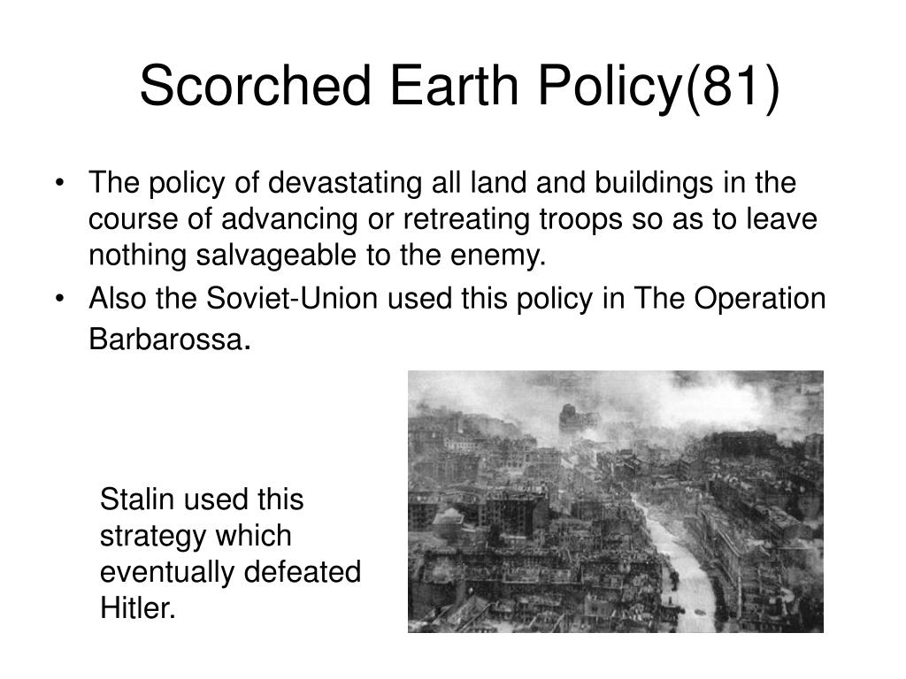 Scorched Earth Policy(81)