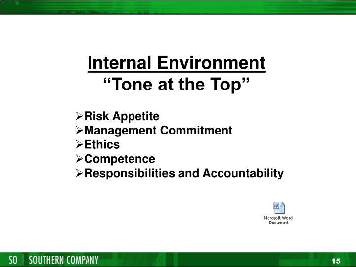 Internal Environment
