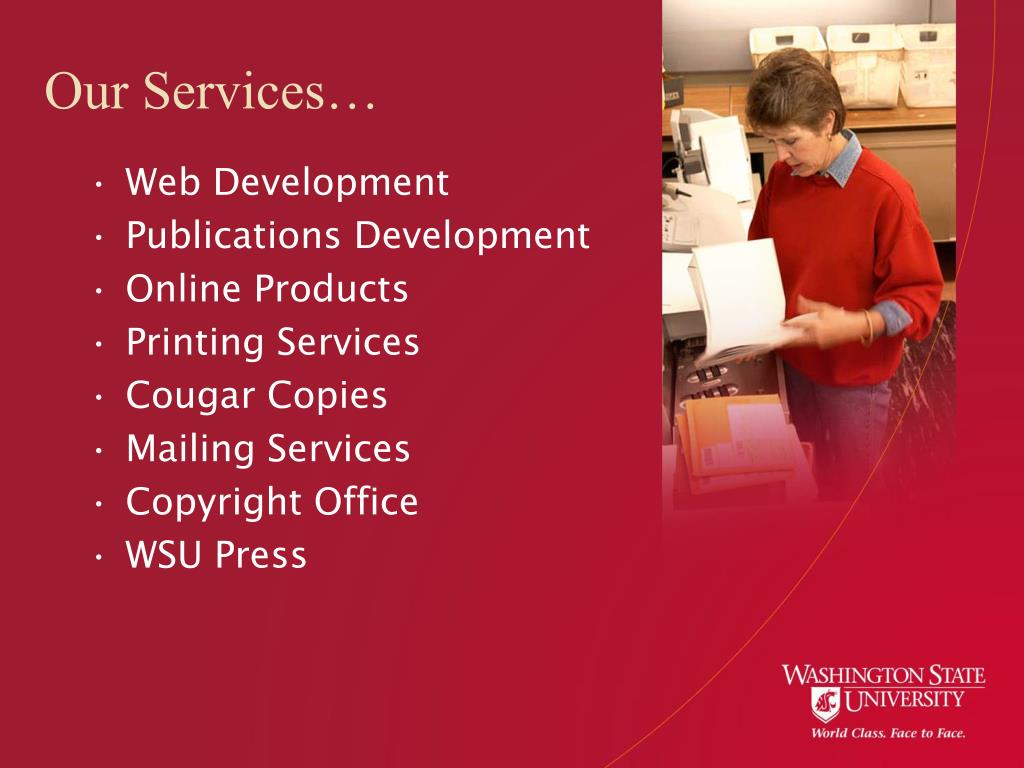 Our Services…