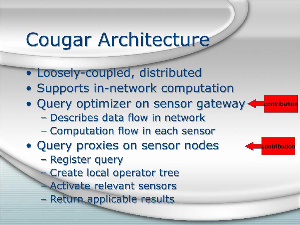 Cougar Architecture