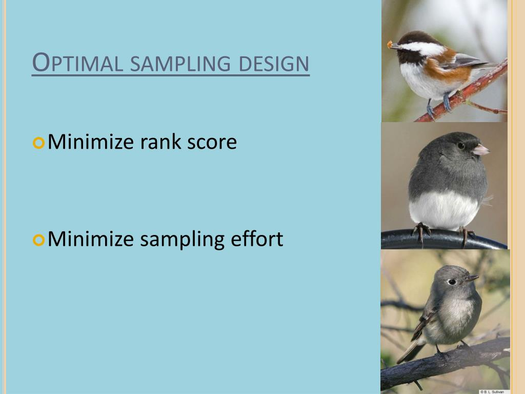 Optimal sampling design