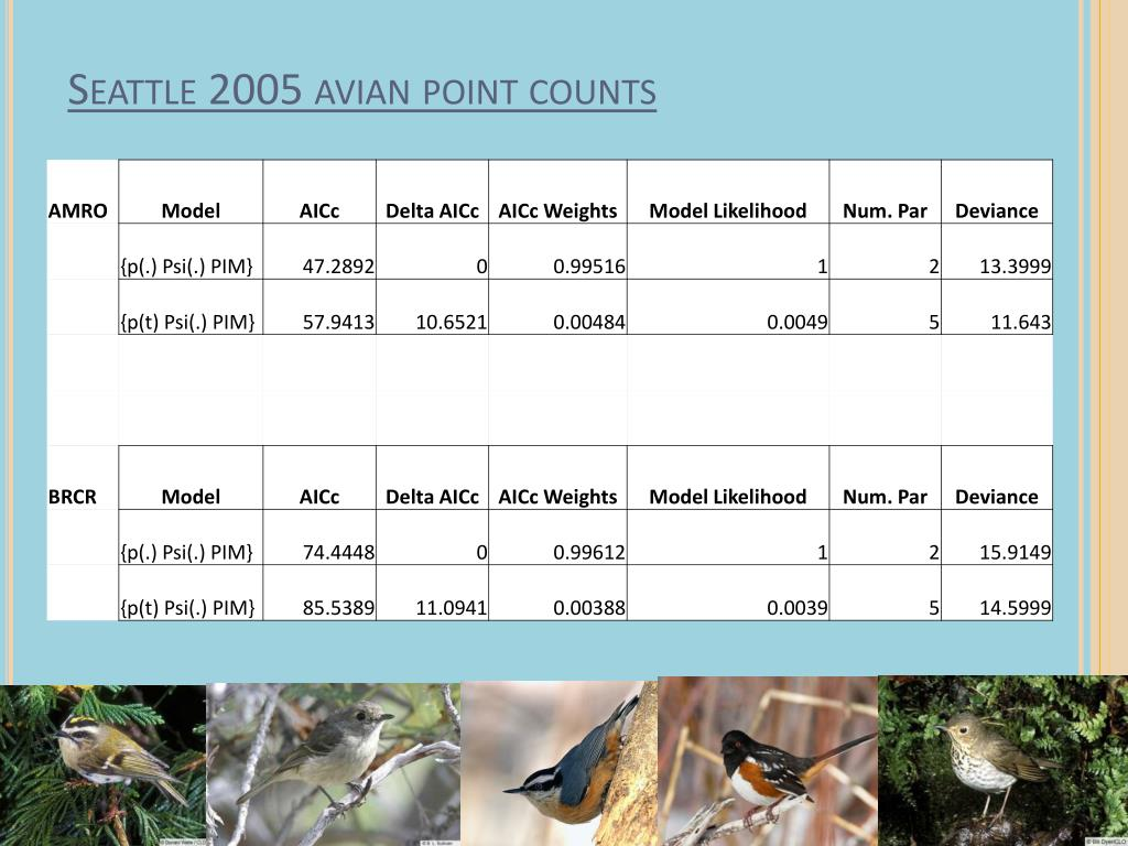 Seattle 2005 avian point counts