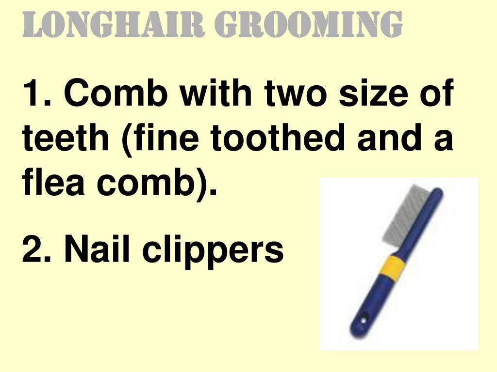 Longhair Grooming