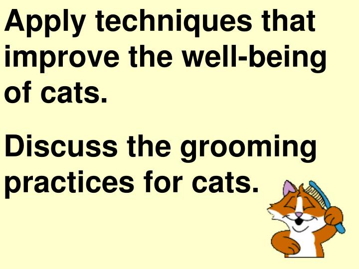 Apply techniques that improve the well-being of cats.
