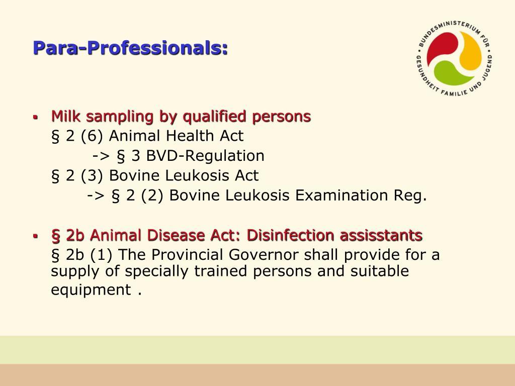 Para-Professionals: