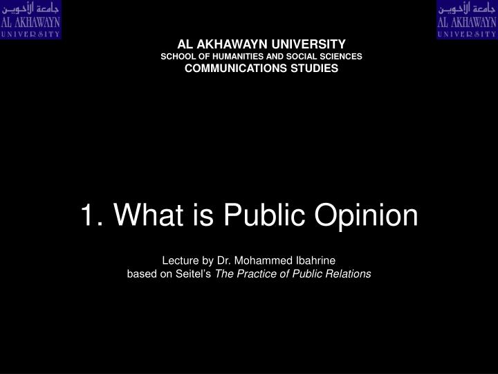 1 what is public opinion