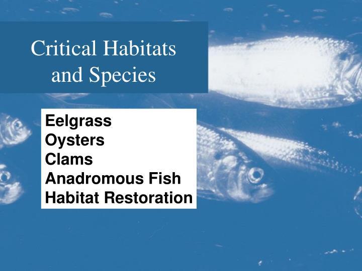 Critical Habitats