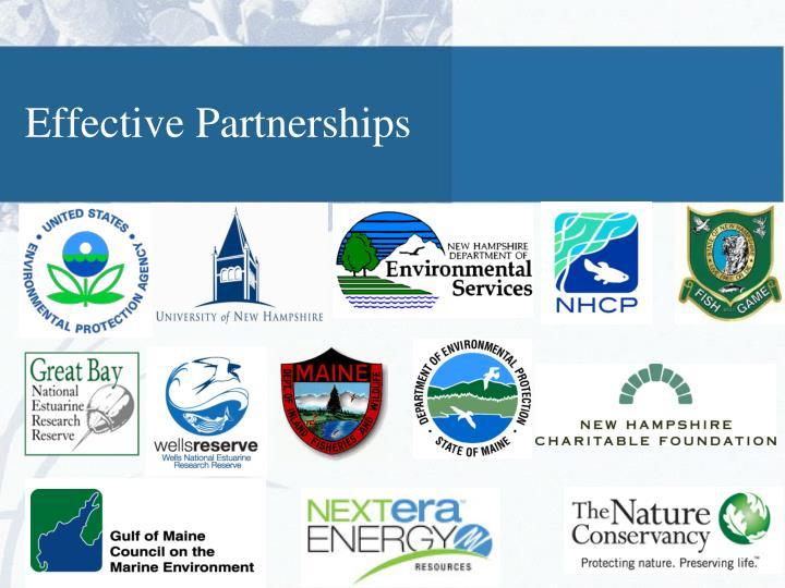 Effective Partnerships