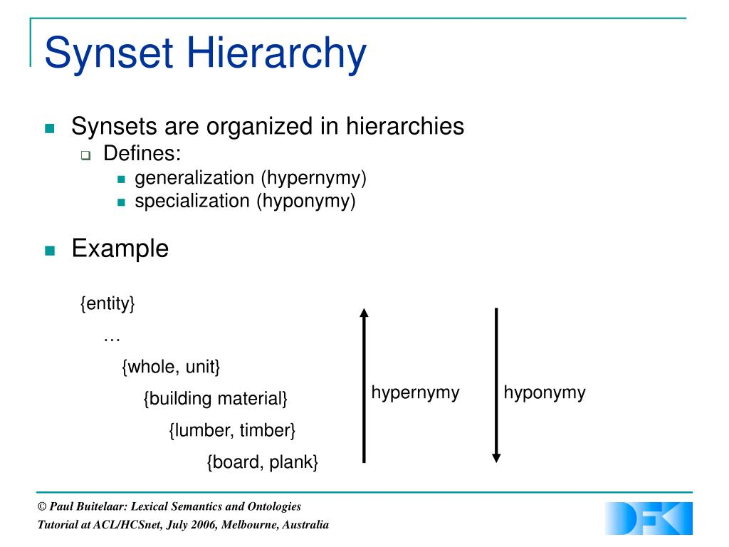 Synset Hierarchy