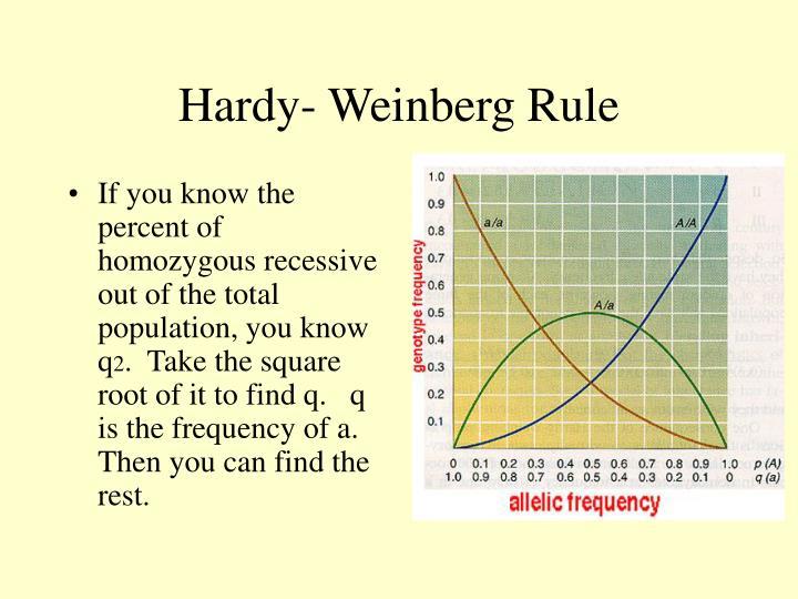 Hardy- Weinberg Rule