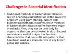 challenges in bacterial identification