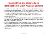 hanging drop give clues to basic identification in gram negative bacteria