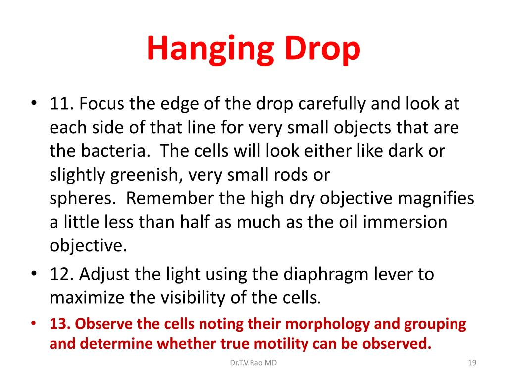 Hanging Drop