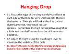 hanging drop19