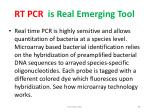 rt pcr is real emerging tool