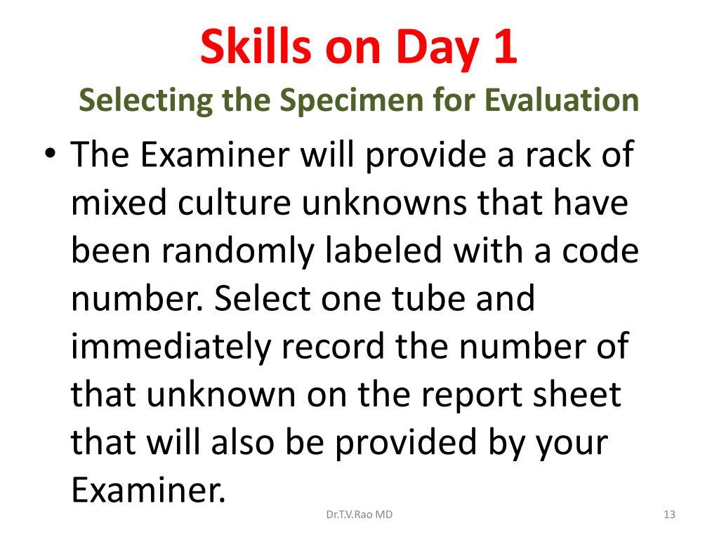 Skills on Day 1