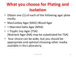 what you choose for plating and isolation