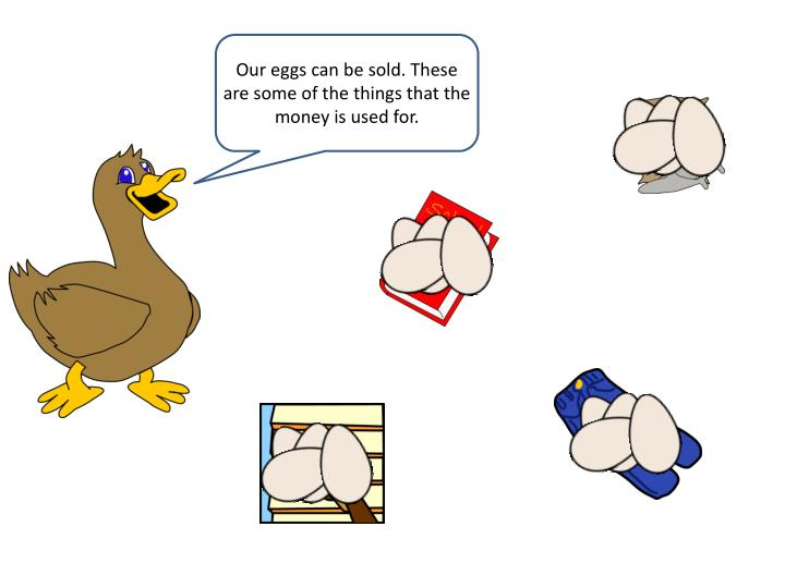 Our eggs can be sold. These are some of the things that the money is used for.