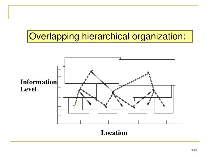 Overlapping hierarchical organization: