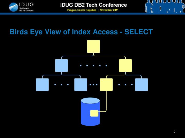 Birds Eye View of Index Access - SELECT