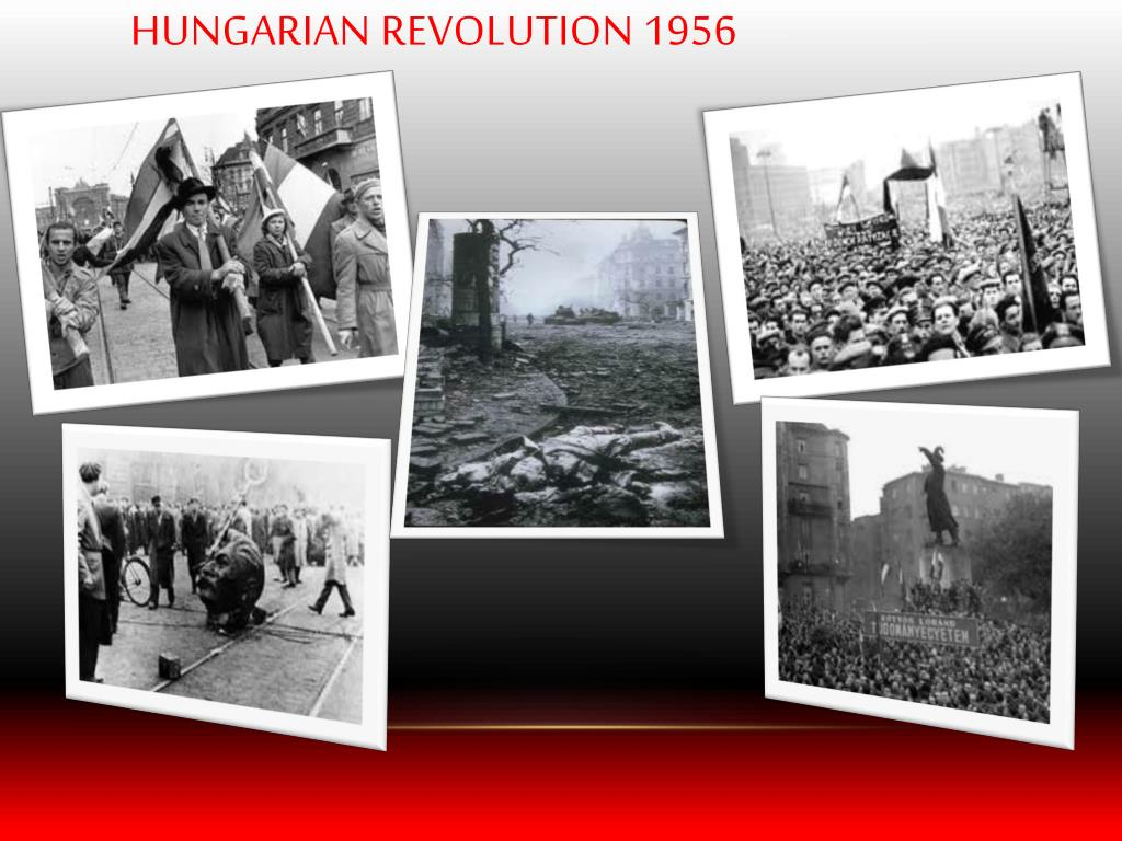 hungarian crisis of 1956 essay What were the three crises of 1956 hungarian crisis the hungarian revolution of 1956 or hungarian uprising of 1956 i need this for an essay.