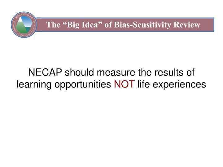 "The ""Big Idea"" of Bias-Sensitivity Review"