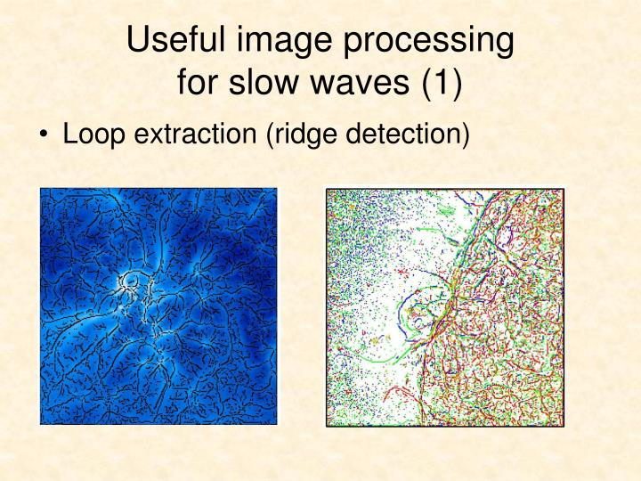 Useful image processing