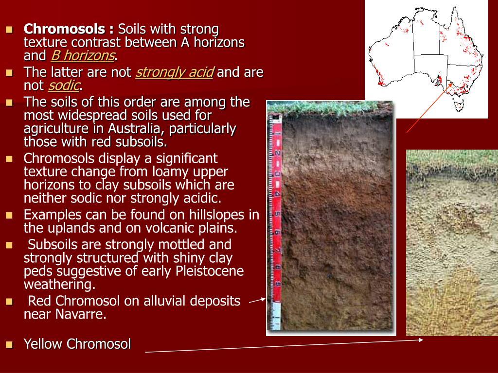 Chromosols :