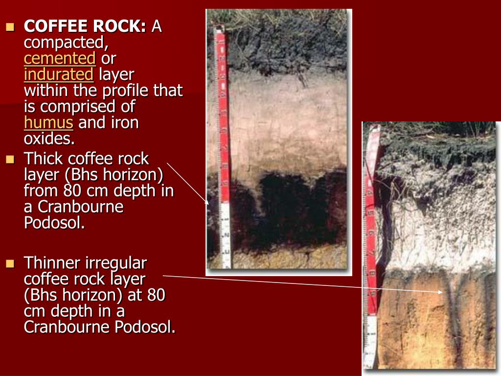 COFFEE ROCK: