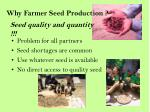 seed quality and quantity