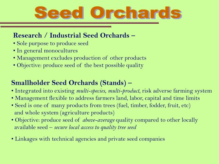 Seed Orchards