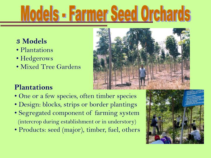 Models - Farmer Seed Orchards