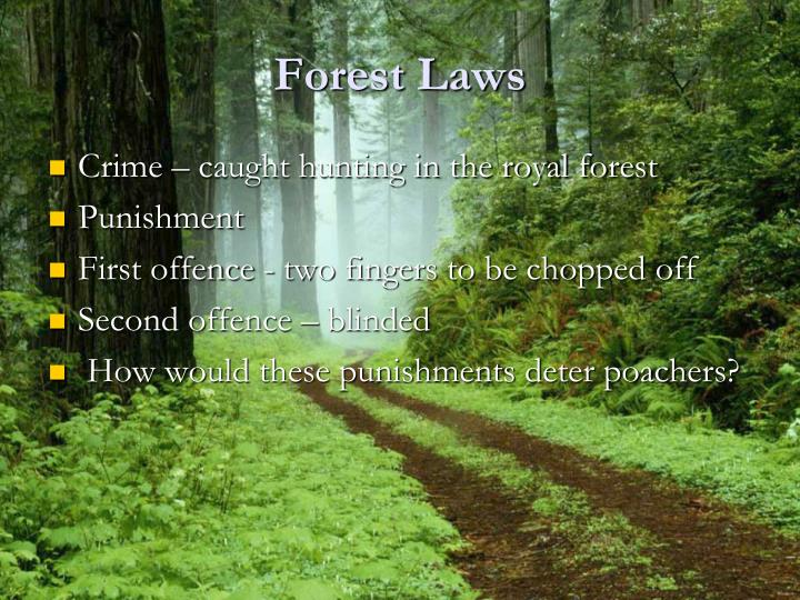 Forest Laws