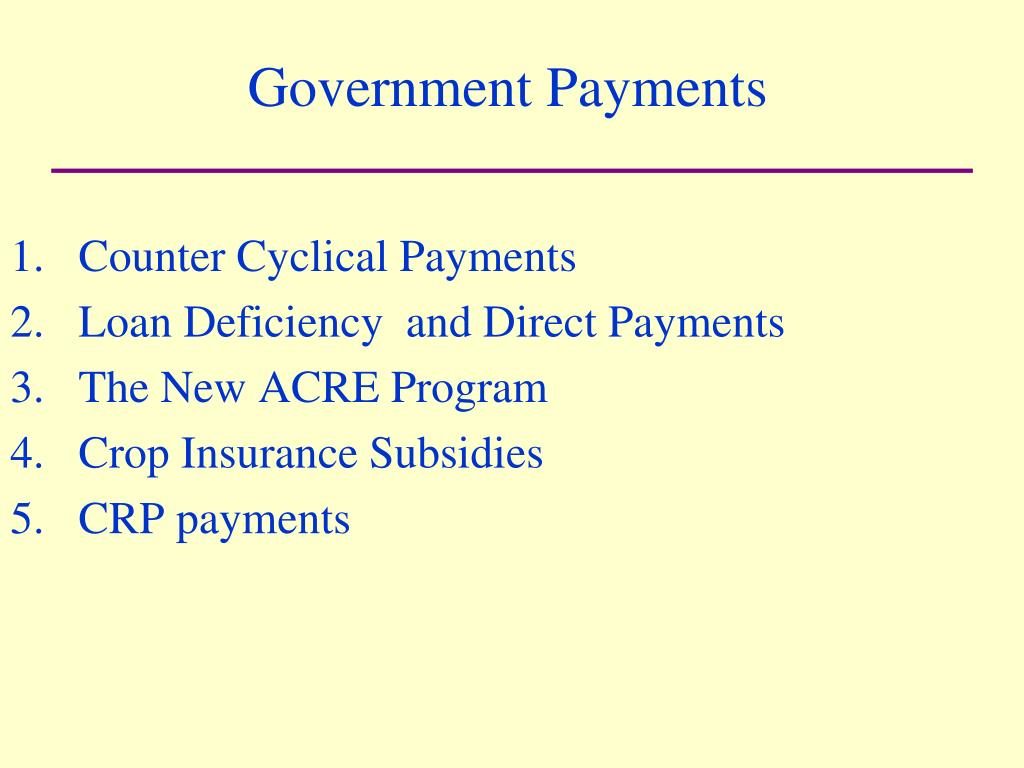 Government Payments