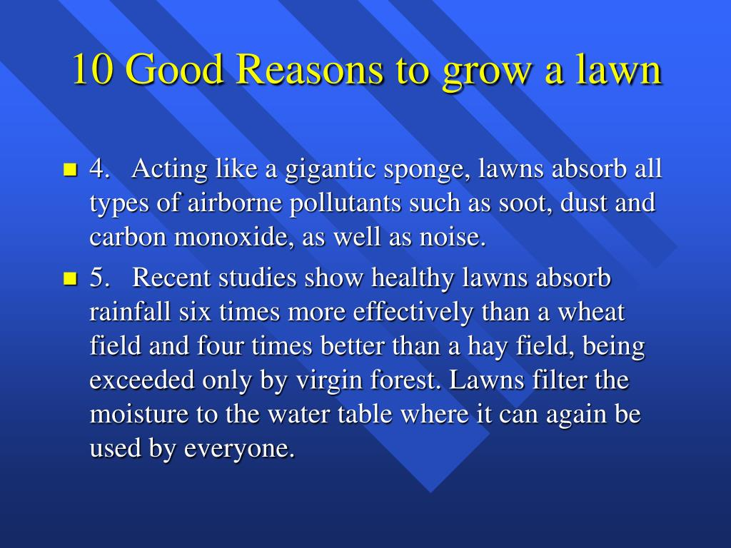 10 Good Reasons to grow a lawn