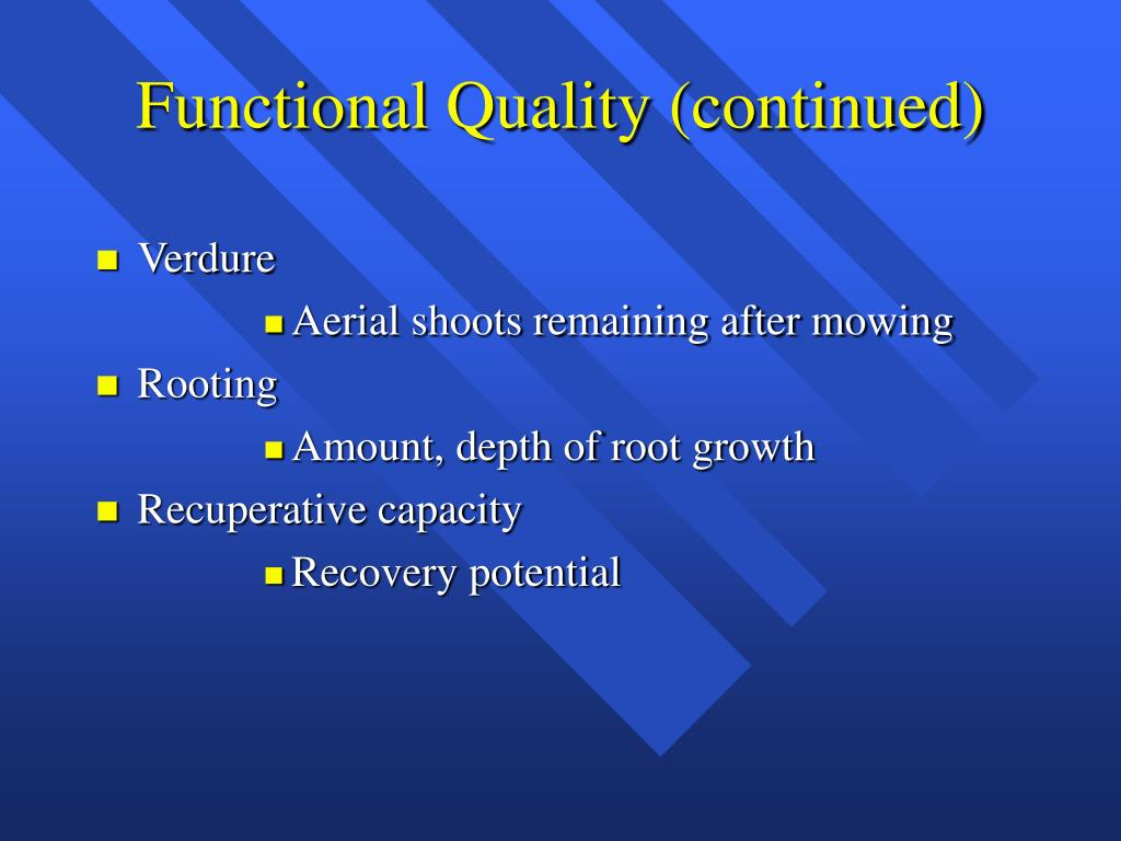 Functional Quality (continued)