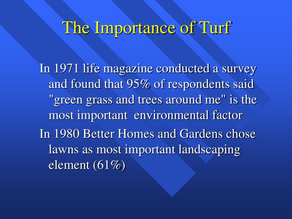 The Importance of Turf