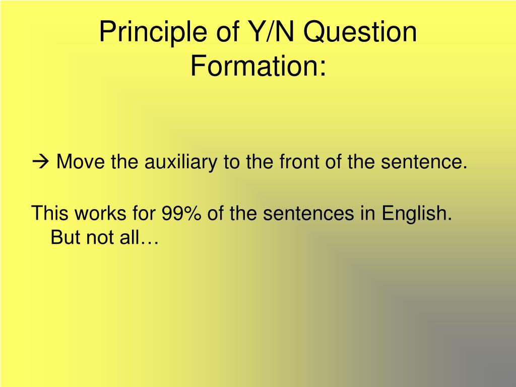 Principle of Y/N Question Formation: