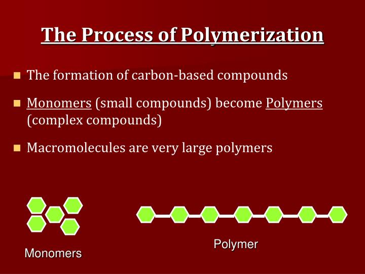 The Process of Polymerization