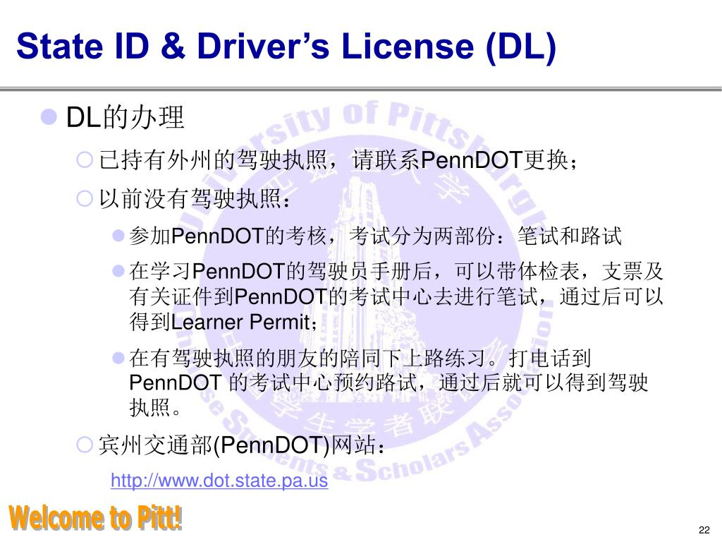 State ID & Driver's License (DL)
