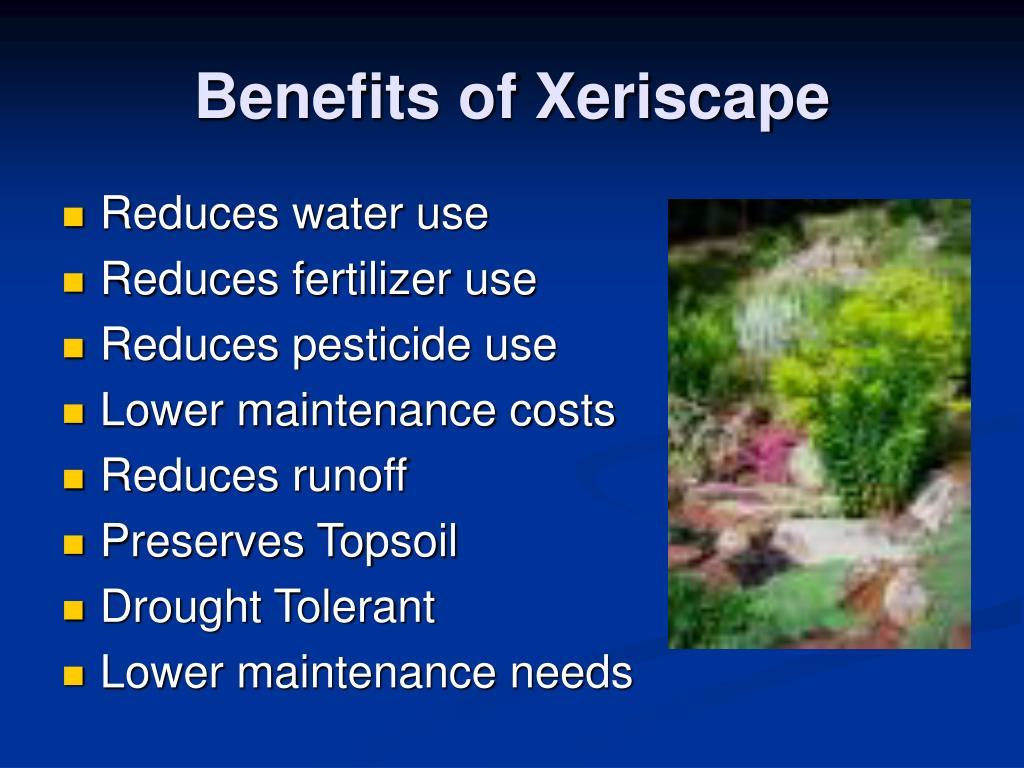 Benefits of Xeriscape