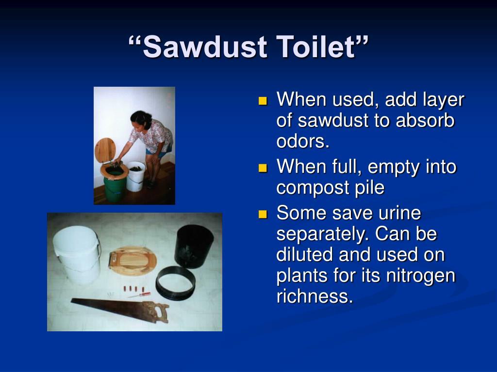 """Sawdust Toilet"""